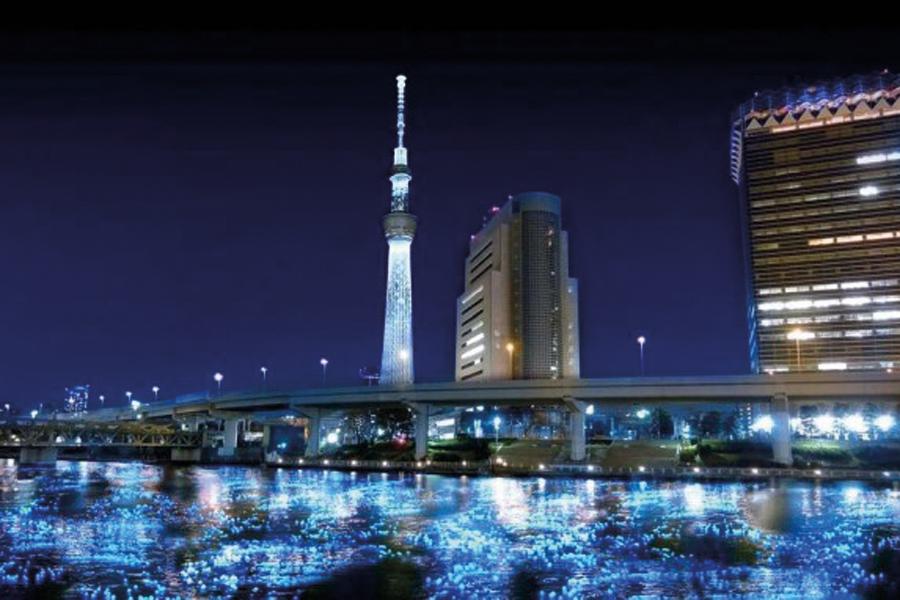 tokyo-hotaru-2-580x432