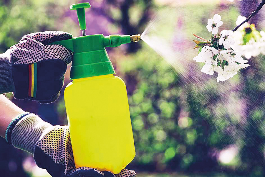 How-to-Apply-Chemicals-Safely-in-the-Garden